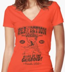 Perfection Valley Women's Fitted V-Neck T-Shirt