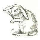 Cute Rabbit Illustration by Hannah Sterry