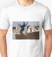 Goat looking through fence for food Unisex T-Shirt