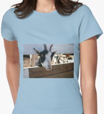 Goat looking through fence for food Womens Fitted T-Shirt
