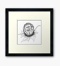 Autumn/Fall Baby Hedgehog Framed Print