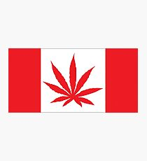 Canadian Flag Marijuana Leaf Photographic Print