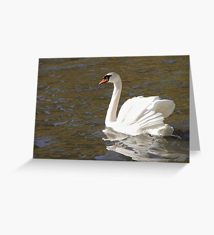 Peace and Gentleness Greeting Card