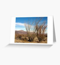 Ocotillo Grove, JoshuaTree Greeting Card
