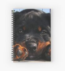Cute Rottweiler Puppy Resting Head Between Paws Spiral Notebook