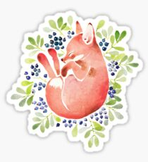 Sleeping fox and blue berries Sticker