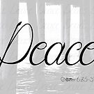 Peace (Matthew 6:25-34) by T-Denise