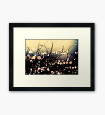 Where wishes come true. Framed Print