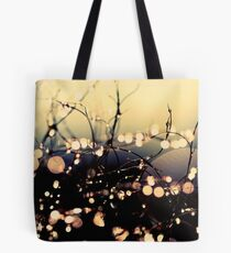 Where wishes come true. Tote Bag