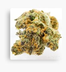 Girl Scout Cookies Strain Canvas Print