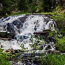 Todd's Falls by Richard Bozarth
