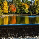 Pioneer Park by Richard Bozarth