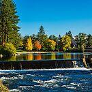 Falls of Pioneer Park by Richard Bozarth