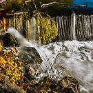 Slow Falls by Richard Bozarth