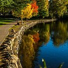 River Mirror by Richard Bozarth