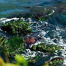 Green/Oregon by Richard Bozarth
