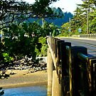 Hwy 1/Oregon by Richard Bozarth