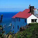 Over the Cliff...../Oregon by Richard Bozarth