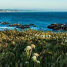 Shore of Creation/Newport by Richard Bozarth