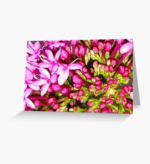 Dainty Pink Flower Greeting Card