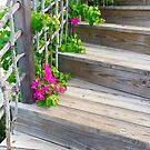 Wooden Stairs by Christine  Wilson