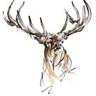Deer artwork for sale, wild animal poster by Mariusz Szmerdt