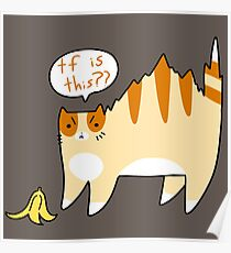 Cat Scared of Banana Peel Poster
