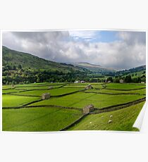 Swaledale Stone Barns Poster