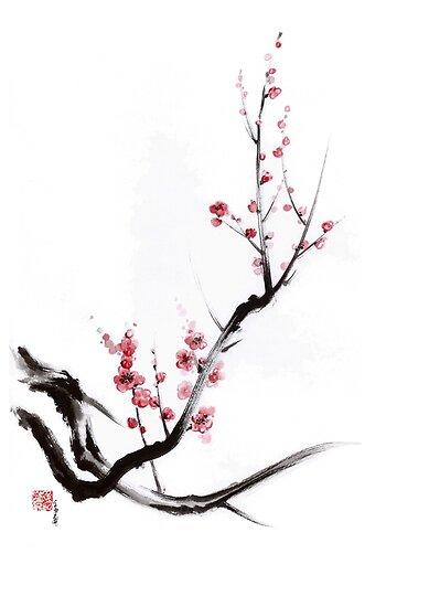 Sakura, Cherry Blossom Plum Chinese Brush Painting Stock ...