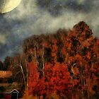 November Flame by RC deWinter