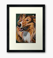 """""""My Best Friend"""" Portrait of A Collie Framed Print"""
