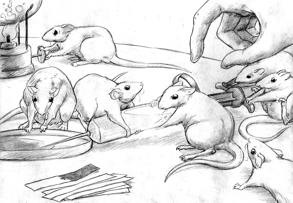 Rattus Lab by Brendan Coyle
