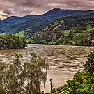 A Bend in the Danube by Tom Gomez