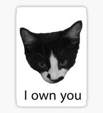 Tuxedo Cat Sticker