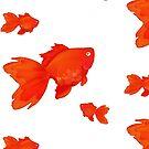 Sweet Orange by vinylah