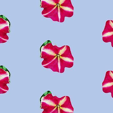Red Petunia by joche