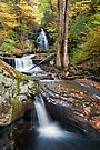 Gazing Up At Ozone Falls In Autumn by Gene Walls