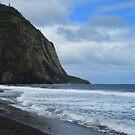 Cliffs Meets the Ocean by photosbypamela