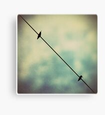 wired hummers Canvas Print