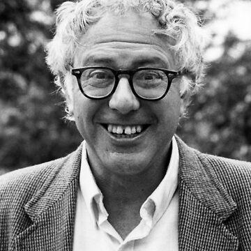 Joven Bernie de itswavey