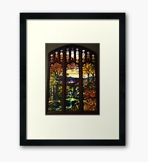 Tiffany Glass, Metropolitan Museum of Art, New York City Framed Print