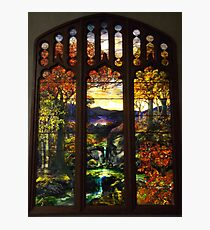 Tiffany Glass, Metropolitan Museum of Art, New York City Photographic Print