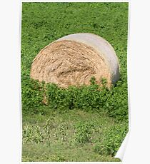 hay in the countryside Poster