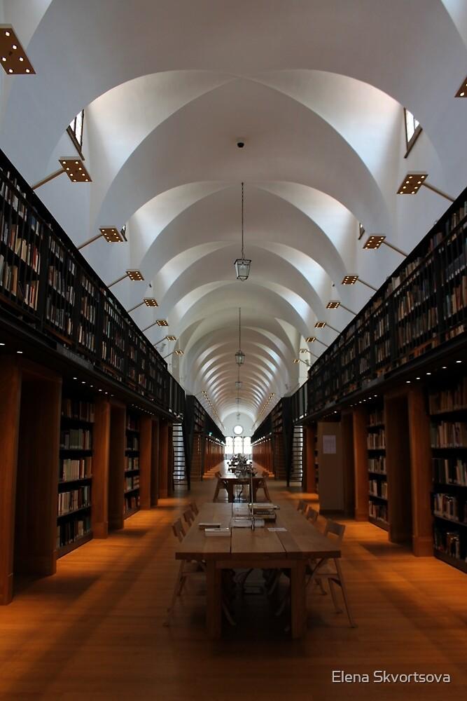 Library arches by Elena Skvortsova