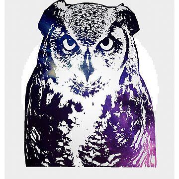 PURPLE OWL by morolean
