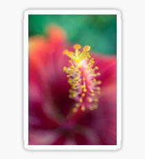 Hibiscus macro Sticker
