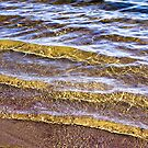 Water Concerto 1 by DAntas