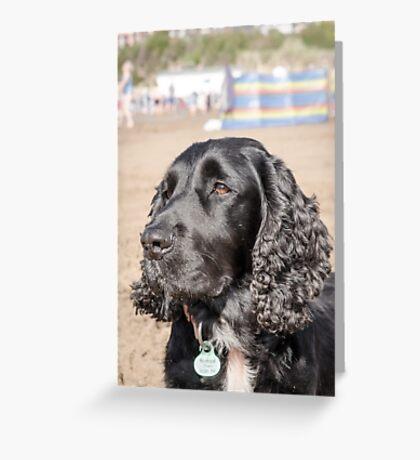 At the beach Greeting Card