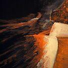 Through the Veil by Fiona Gardner