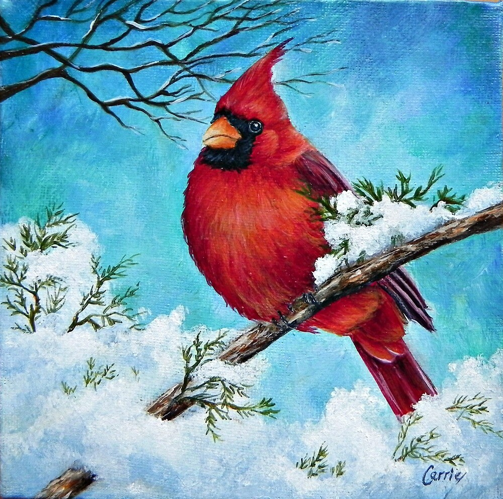 Cardinal Bird Snow Winter by Carrie Paquette
